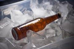 Бутылки пива на льде Стоковые Изображения RF