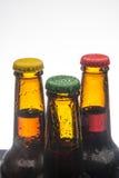 бутылки пива предпосылки красят нежный померанцовый сфотографированный желтый цвет студии Стоковая Фотография RF