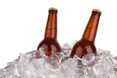 Бутылки пива Стоковая Фотография