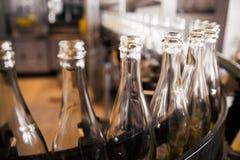 Бутылки питья Стоковая Фотография RF