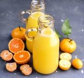 2 бутылки сока цитруса служили с свежим цитрусом всех и куска на серой предпосылке Стоковые Изображения