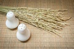 Бутылки соли и перца на деревянной предпосылке Стоковые Фото