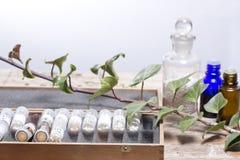 Бутылки с глобулами гомеопатии Стоковые Изображения RF