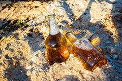Бутылки с золотым пивом в опилк Стоковые Фотографии RF