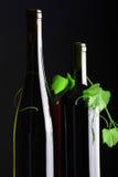 2 бутылки с красным и белым вином Стоковые Изображения