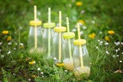 Бутылки с соком при красочные соломы, лежа вниз на траве Стоковое Фото