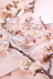 2 бутылки дух окруженной цветением абрикоса Стоковое Фото