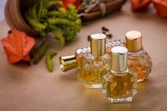 Бутылки дух с ингридиентами Стоковые Изображения RF