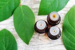 3 бутылки эфирного масла над деревянной предпосылкой Взгляд сверху, космос экземпляра Стоковое Фото