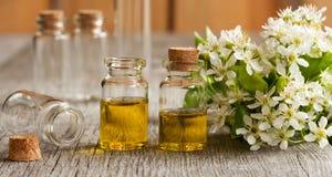 2 бутылки эфирного масла с белыми цветениями Стоковые Изображения