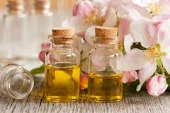 2 бутылки эфирного масла с цветениями яблока Стоковые Изображения RF