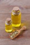 Бутылки эфирного масла фенхеля и деревянный ветроуловитель с семенами фенхеля на деревянной предпосылке Стоковая Фотография RF