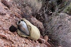 Буфет в пустыне стоковые фотографии rf