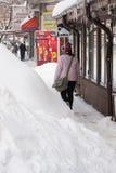 БУХАРЕСТ РУМЫНИЯ - 14-ое февраля: Аномалии погоды Стоковая Фотография RF