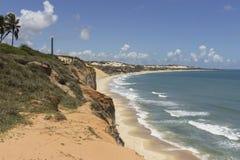 Бухта дельфинов - натальные пляжи Бразилии стоковое фото rf