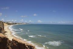 Бухта дельфинов - натальные пляжи Бразилии стоковое изображение rf