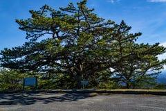 Бухта таза обозревает, голубой бульвар Риджа, Северная Каролина, США Стоковое Фото