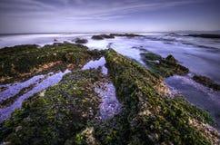 бухточка corallina Стоковая Фотография RF