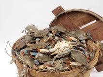 бушель crabs2 корзины Стоковое Фото