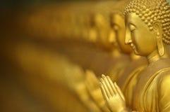 Будда в ряд Стоковая Фотография RF