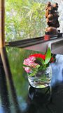 Будда и цветки Стоковое Фото