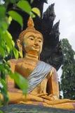 Будда Таиланд Стоковые Фото