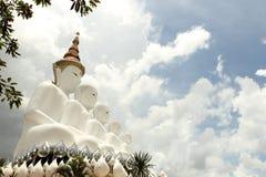 5 Будда Стоковые Изображения
