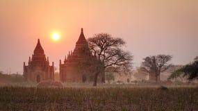 Буддийские виски на заходе солнца в Bagan, Мьянме Стоковое Изображение