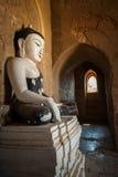 Буддийские виски на королевстве Bagan, Мьянма (Бирма) Стоковые Изображения RF