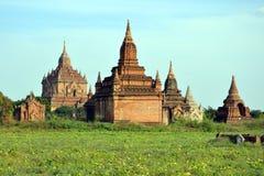 Буддийские пагоды Стоковые Изображения RF