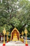 Буддийские реликвии Стоковое Изображение RF