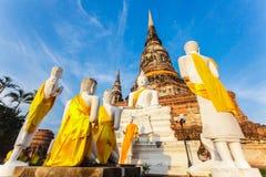Буддийский висок Ayutthaya Стоковое Изображение RF