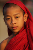 Буддийский послушник, Мьянма Стоковые Фото