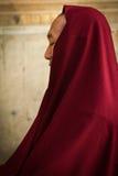 Буддийский подвижник виска Mahabodhi, Bodh Gaya, Индии Стоковое фото RF