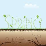 Будить весны Стоковая Фотография RF