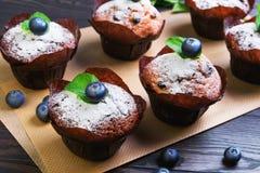 6 булочек ягоды с голубикой ягод стоковое изображение