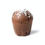 Булочка шоколада с изюминками Стоковая Фотография