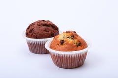 Булочки голубики и шоколада в бумажном держателе пирожного Стоковая Фотография