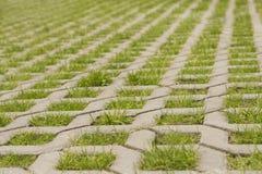 Булыжник в форме решетки и трава в отверстиях стоковая фотография