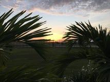 Бульвар захода солнца Стоковое Изображение