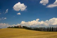 Бульвар кипарисов в Тоскане Стоковое фото RF