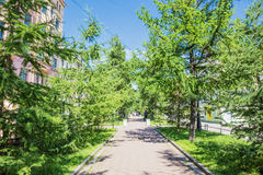 Бульвар Andreevsky, который расположен между шестыми и седьмыми линиями на острове Vasilyevsky в Санкт-Петербурге Стоковое Изображение RF