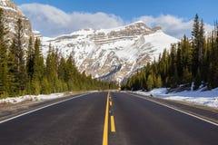 Бульвар Icefields стоковые изображения rf
