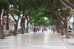 Бульвар Prado в центре города Гаваны Стоковое Изображение RF