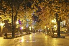 Бульвар Primorsky в Одессе на ноче Стоковое Изображение