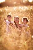 Будьте матерью обнимать ее сына и дочери в пшеничном поле Стоковые Изображения