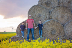 Будьте отцом детей andTwo, братьев мальчика в поле рапса семени масличной культуры, si Стоковые Фото