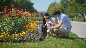 Будьте отцом приходить и покажите кровать цветков к его сыну видеоматериал