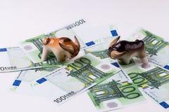 2 быка на банкнотах ЕВРО на белой предпосылке Финансовые инвестиции концепции, рынок тенденцией к повышению курсов Стоковая Фотография RF