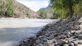 Быстрая и турбулентная подача реки Chuya горы прослоенного в скалистых берегах болотистого леса акции видеоматериалы